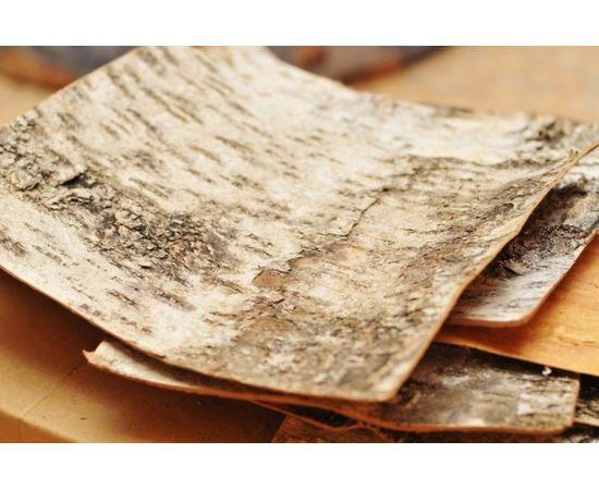 Листы бересты 20х20. Береста для поделок, фото , изображение 4