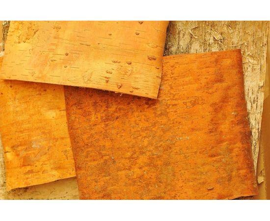 Листы бересты 20х20. Береста для поделок, фото , изображение 5
