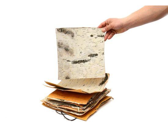 Листы бересты 40х40. Береста для поделок, фото , изображение 2